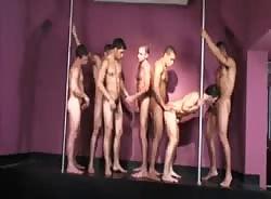 Brazilian Stud Orgy